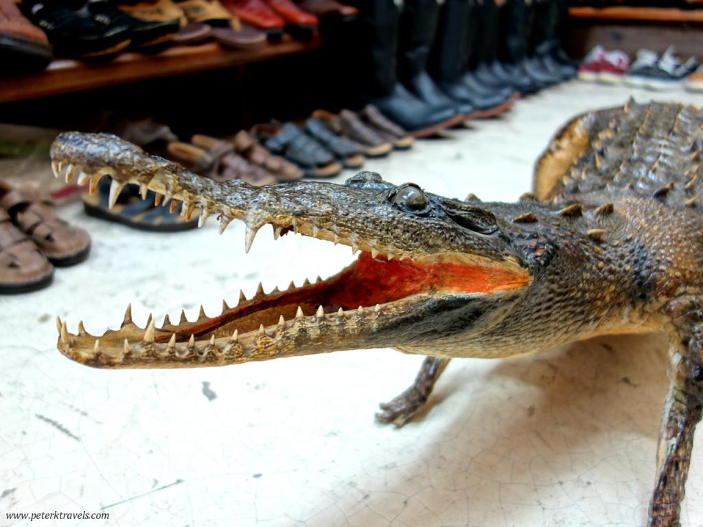 Boot Shop Croc