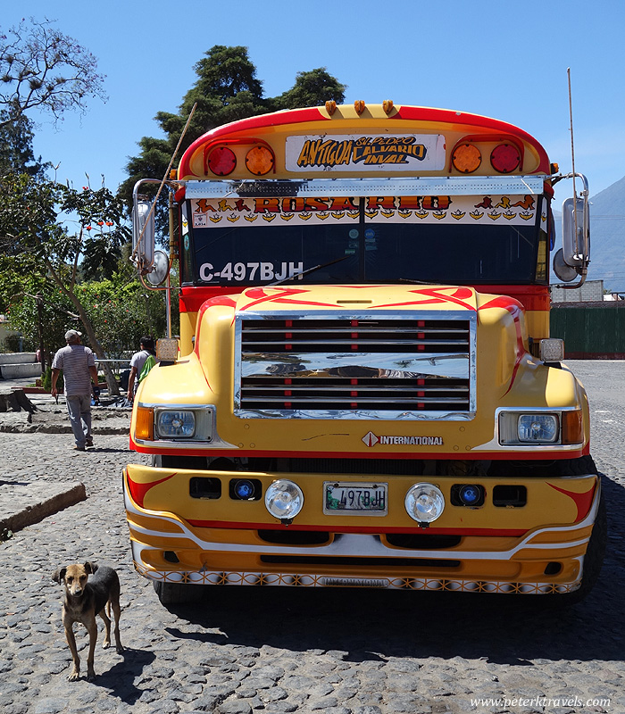 Chicken bus and dog, San Pedro Las Huertas