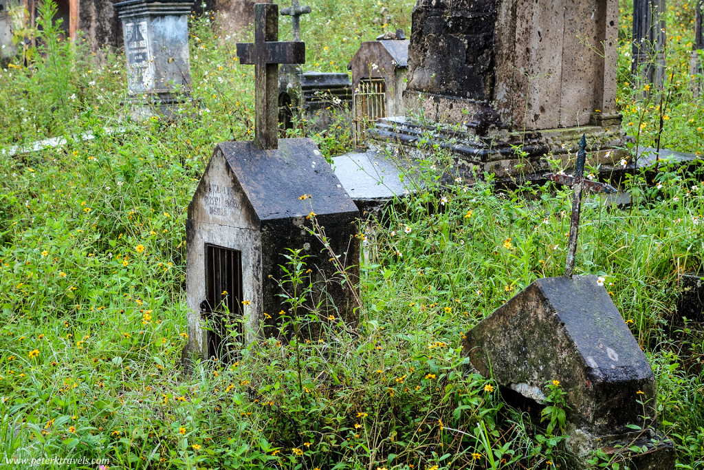 Overgrown Graves, Antiguo Panteón de Xalapa