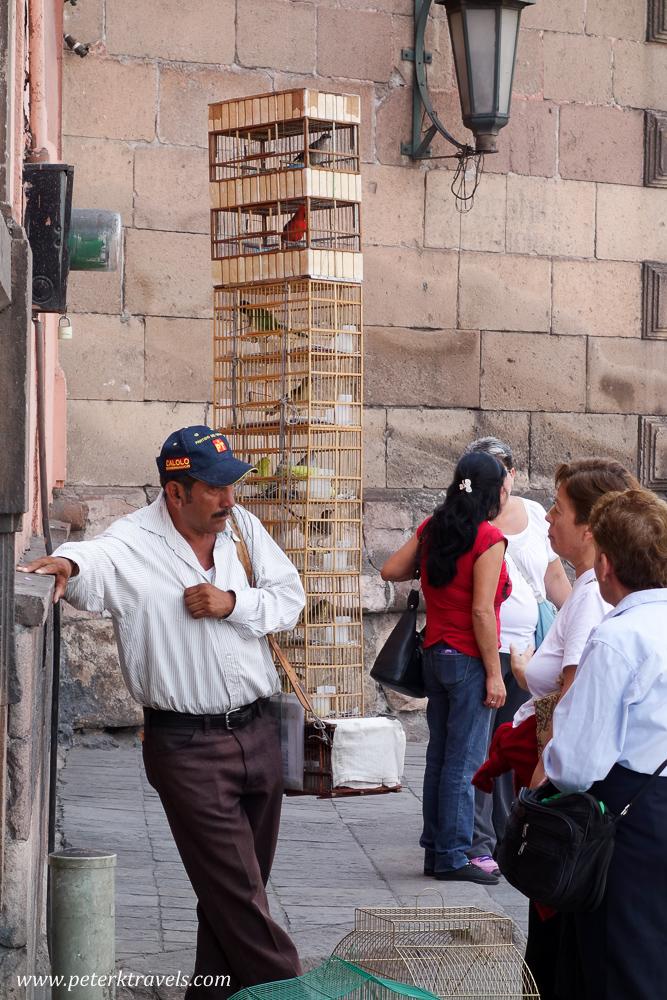 Bird Salesman, San Luis Potosi