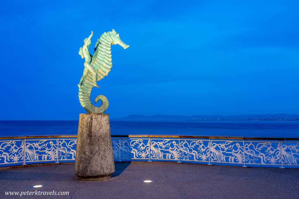 Seahorse at Dawn, Puerto Vallarta