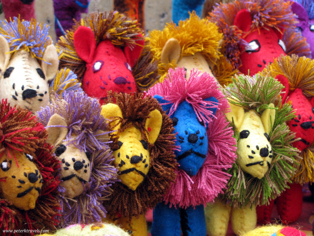 Lions for sale