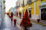Calle 59, Campeche.